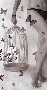 Аватар вконтакте ноги,бабочки,клетка