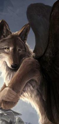 Обои Крылатый волк позирует