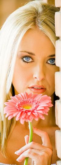 Обои красивая девушка с розовой герберой