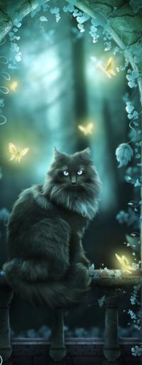 Аватар вконтакте Кот с бабочками в волшебстве ночи