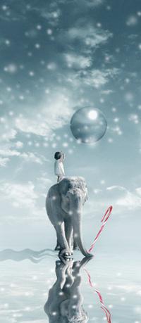 Аватар вконтакте Девочка на спине слона хочет дотянуться до шарика