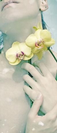 Обои Прижимает к себе орхидеи