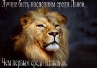 99px.ru аватар Лучше быть последним среди львов, чем первым среди шакалов
