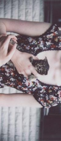 Аватар вконтакте девушка держит котенка