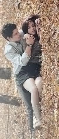 Обои девушка и парень лежат на осенних листьях