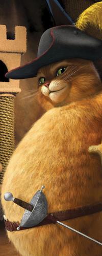 Аватар вконтакте Ожиревший кот из мультфильма Шрек 3
