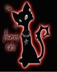 Обои The Anarchy Cats