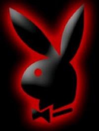 Обои Зайчик(Playboy)