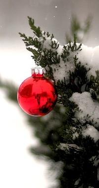 Аватар вконтакте Красная новогодняя игрушка на елке