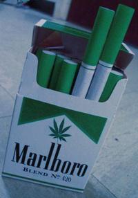 Мальборо сигареты с коноплей фото автоцветущей марихуаны