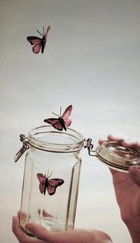 Обои Бабочки, вылетающие из банки