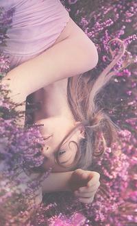 Обои Девушка лежит в цветах