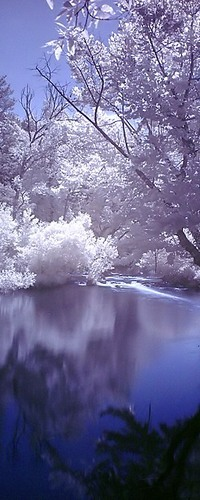 Обои Красивая природа зимой