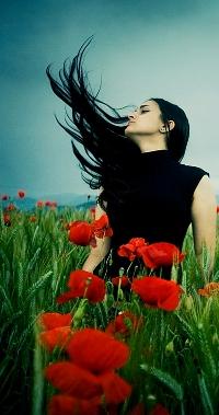 Обои Девушка взмахивает волосами в маковом поле