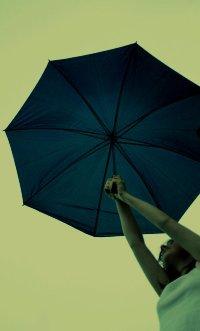 Обои Девушка с зонтом в руках