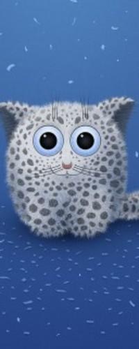 Аватар вконтакте Смешной котик с большими глазами
