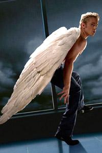 Обои Улетающий ангел