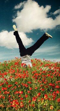 Обои Парень стоит на руках в цветочном поле