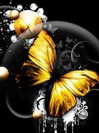Аватар вконтакте Красивые бабочки