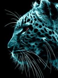 Аватар вконтакте Леопард в неоновом свете