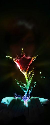 Обои Цветок из неоновых брызгов в руках у девушки