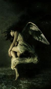 Обои Ангел