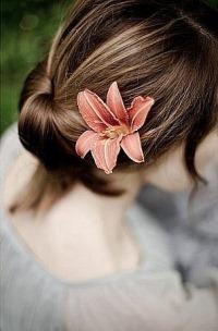 Обои Девушка с лилией в волосах