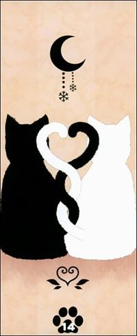 Аватар вконтакте Влюблённые кошки