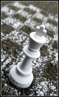 Аватар вконтакте Белый король на нарисованной шахматной доске