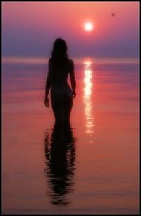 в воде на фоне заката...
