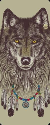 волк с перьями фото