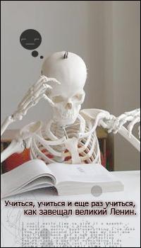 99px.ru аватар Скелет над учебником (Учиться, учиться и еще раз учиться, как завещал великий Ленин)
