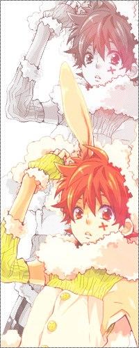 Аватар вконтакте Sawada Tsunayoshi / Савада Тсунаёши из аниме Репетитор-киллер Реборн / Katekyo Hitman Reborn в костюме кролика