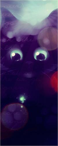 Аватар вконтакте Чёрный котёнок смотрит на волшебную зелёную искорку