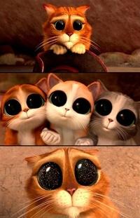 Аватар вконтакте Фрагмент из мультфильма Кот в сапогах: Три чертенка