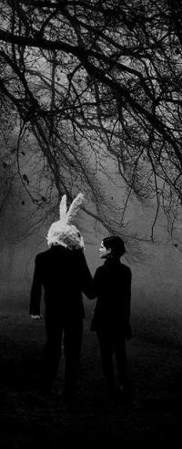 Аватар вконтакте Девушка и человек с головой кролика идут по ночному лесу