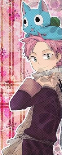 Аватар вконтакте Happy / Хэппи сидит на голове у Нацу / Natsu, аниме «Хвост Феи / Fairy Tail»