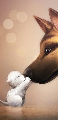 Аватар вконтакте Белый маленький котенок держит лапками нос большой собаки и целует его. На коричневом фоне блики