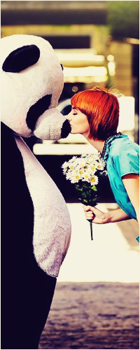 Аватар вконтакте Рыжая девушка с букетом ромашек в руке целует парня в костюме панды в нос