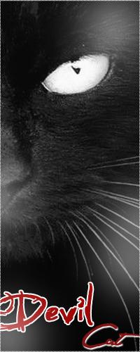 Аватар вконтакте Черный кот с белым глазом (Devil Cat / Дьявольский Кот)