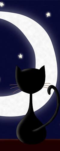 Аватар вконтакте Черная кошка сидит на фоне ночного неба, луны и звезд