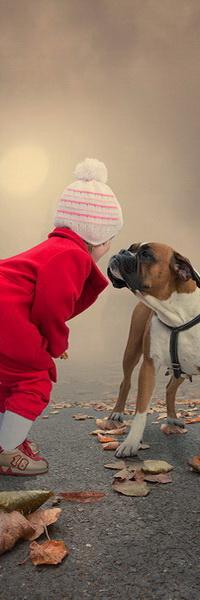 Аватар вконтакте Маленькая девочка в красном пальто и белой, с розовыми полосками, вязаной шапочке, стоит на тротуаре, усыпанном осенними листьями, рядом с собакой породы боксер, на фоне туманной мглы, автор Garas Ionut