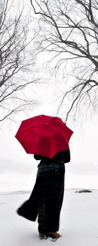 Аватар вконтакте Девушка в длинном черном пальто с красным зонтиком, стоящая возле дерева под падающим снегом