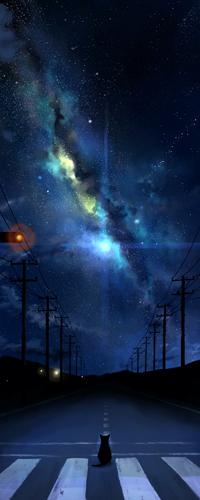 Аватар вконтакте Кошка сидит на пустынной дороге на фоне ночного неба