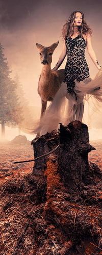 Аватар вконтакте Стройная, длинноволосая девушка стоящая на трухлявых пнях рядом с молодым оленем на фоне пасмурного неба, охваченного туманной дымкой, фотограф Caras Ionut