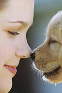 Аватар вконтакте Девочка носом коснулась носа щенка