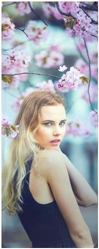 Аватар вконтакте Светловолосая девушка стоит под ветками цветущего дерева