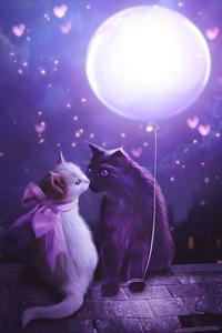 Аватар вконтакте Белая кошечка, с красным бантом, и черный кот сидят на крыше дома в окружении сердечек, к лапе кота привязан воздушный шар в виде луны