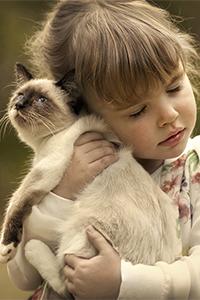 Аватар вконтакте Девочка, с закрытыми глазами, прижала к себе сиамскую кошку, фотограф Елена Шумилова