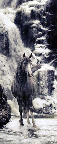 Аватар вконтакте Лошадь бежит по воде рядом с водопадом